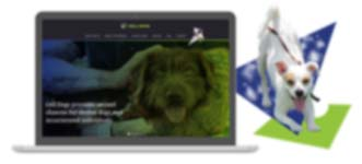 Cell Dogs Website