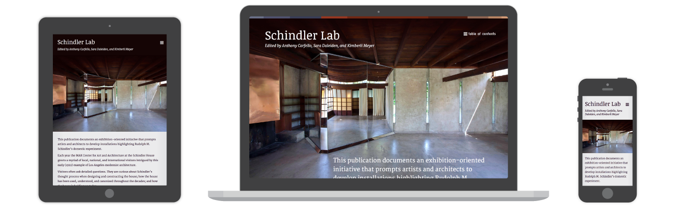 Schindler Lab Online Publication